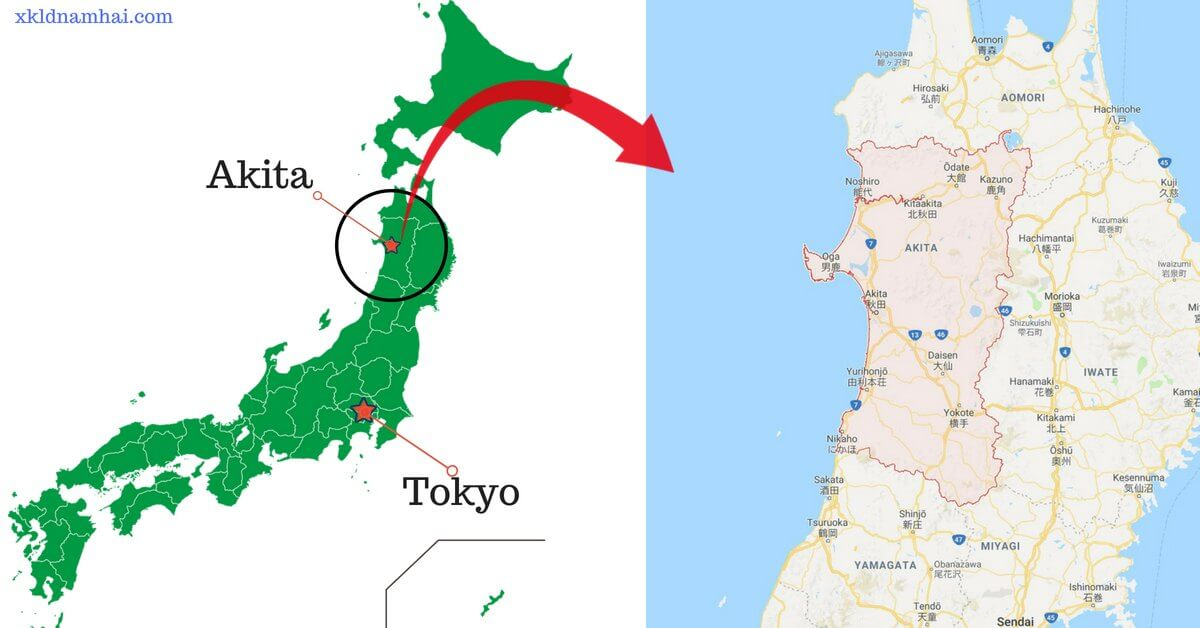 Bản đồ tỉnh Akita Nhật Bản