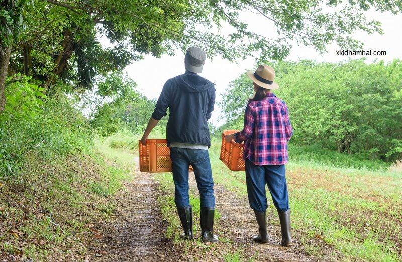 Nông nghiệp là ngành nghề có yêu cầu thấp về thị lực