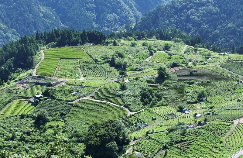Phía nam tỉnh Gifu