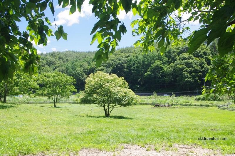 tỉnh Nagano với màu xanh diệu kỳ