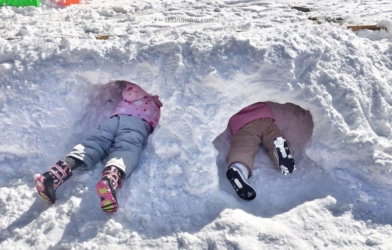 tuyết rơi dày đặc tại Hokkaido