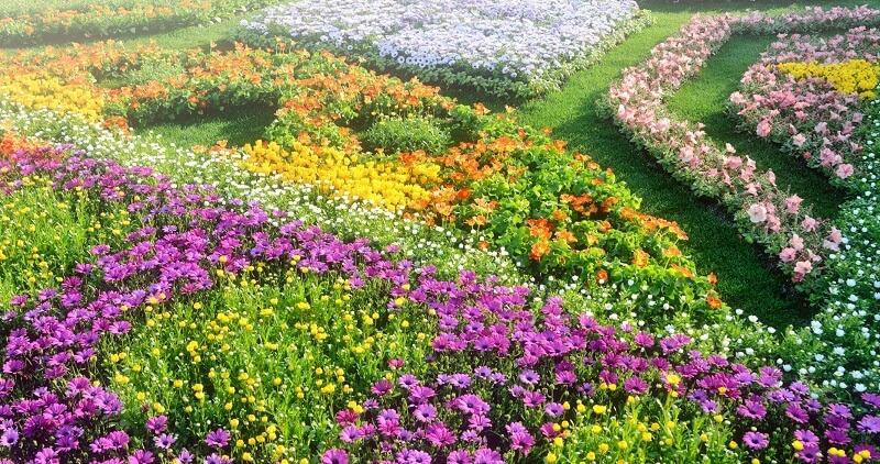 vườn hoa 4 mùa tỉnh gunma
