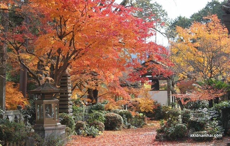 Kyoto mùa thu