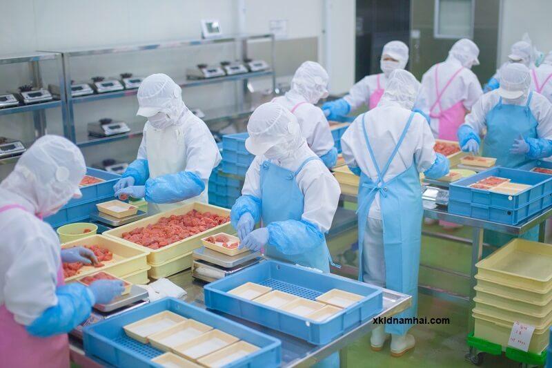 Công việc chế biến thực phẩm cho các bạn nữ