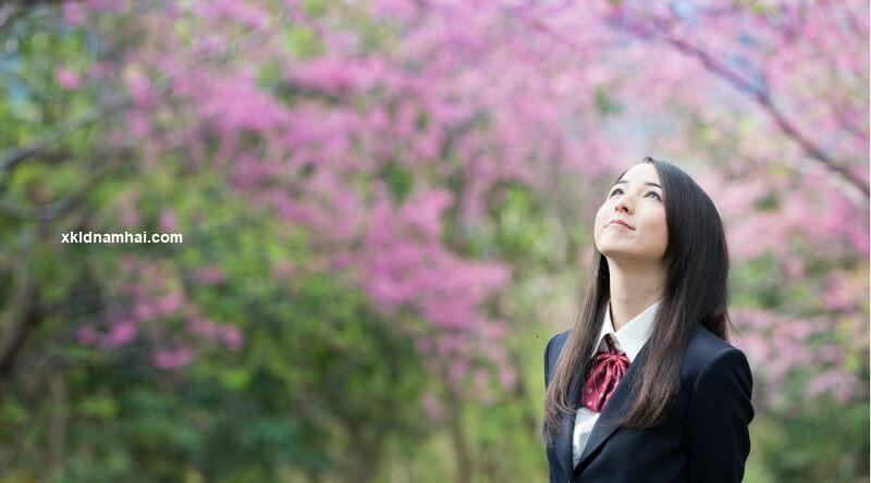 Đi Nhật làm việc theo diện du học