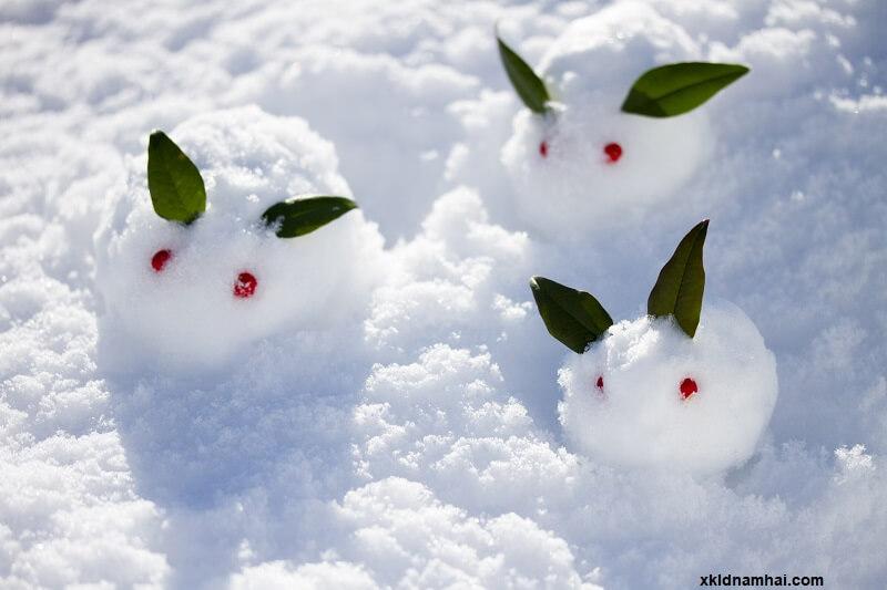 Mùa đông ở Nhật Bản khá khắc nghiệt