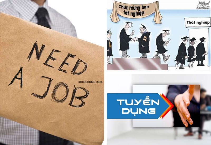 tỷ lệ thất nghiệp khi ra trường