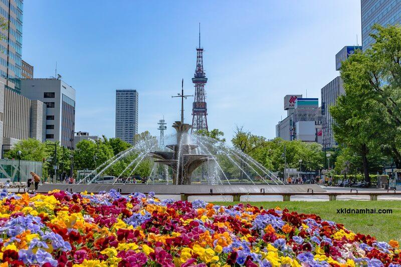 Thời tiết ở Nhật khá dễ chịu