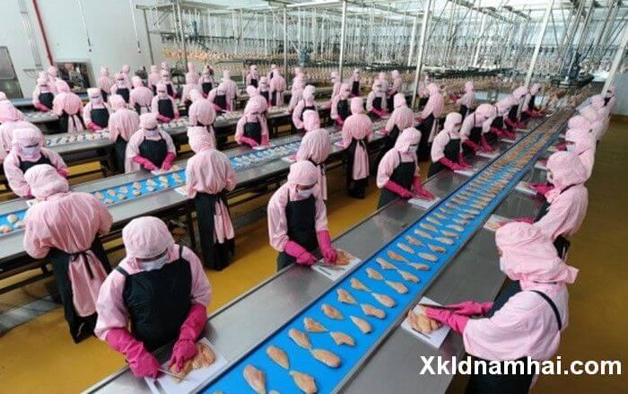 Những điều cần biết khi đi xuất khẩu lao động Nhật Bản