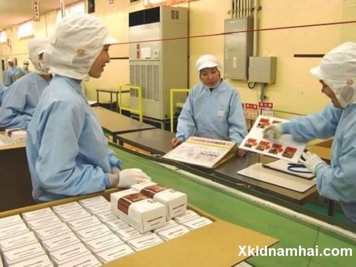 Đơn hàng kiểm tra và đóng gói sản phẩm ở CHIBA