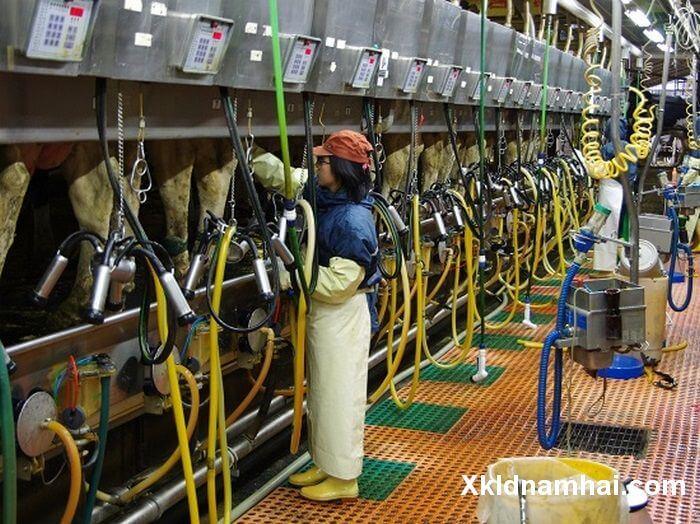 Đi xuất khẩu lao động Nhật Bản lương bao nhiêu?