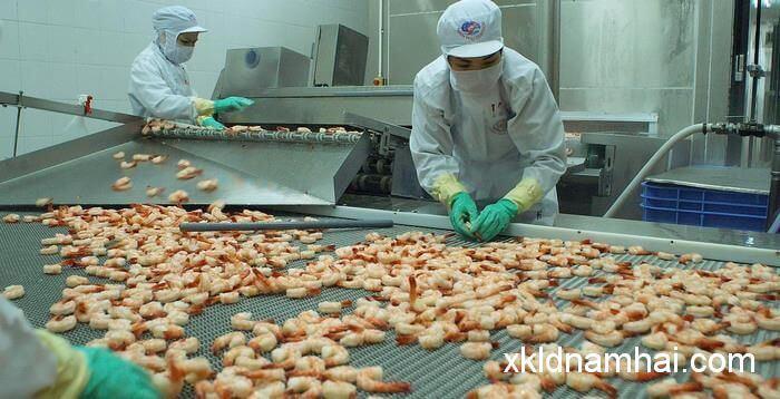 Chế biến thực phẩm thủy sản gia nhiệt 6 nữ